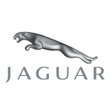 Jaguar Gallery